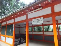 matsu_kyoto_cablekuramayama01S