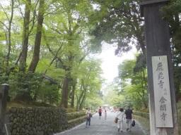 matsu_kyoto_hitetsu_kinkakuji02S