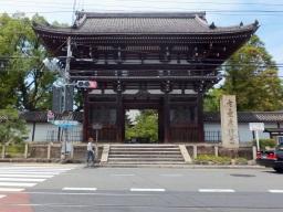 matsu_kyoto_hitetsu_koryuji01S