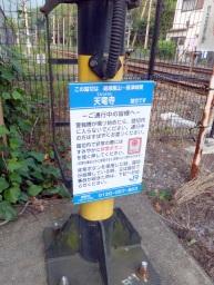 matsu_kyoto_hitetsu_tenryuji03S